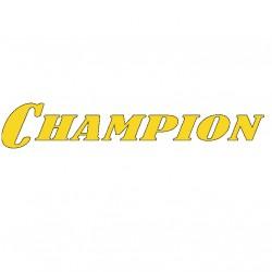 Двигатели Champion